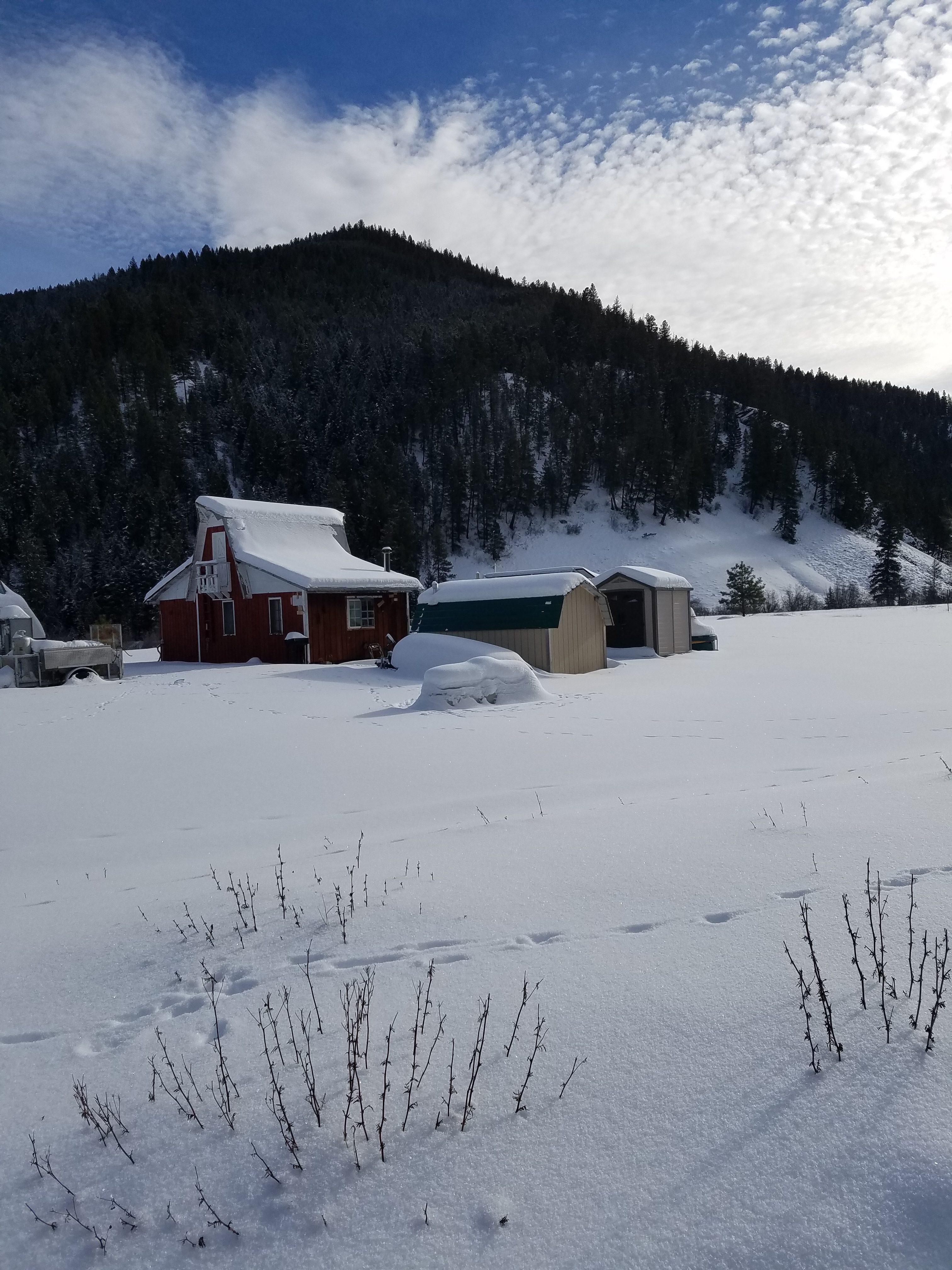 Eric's Cabin – 15Jan16